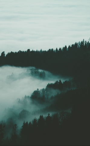 foggy-1149652_1920